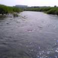 Arakarwa2008__07200