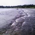 Arakarwa2008__09200