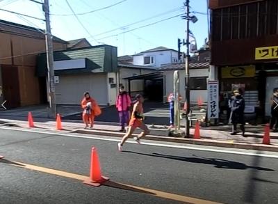 Tatezawa2015